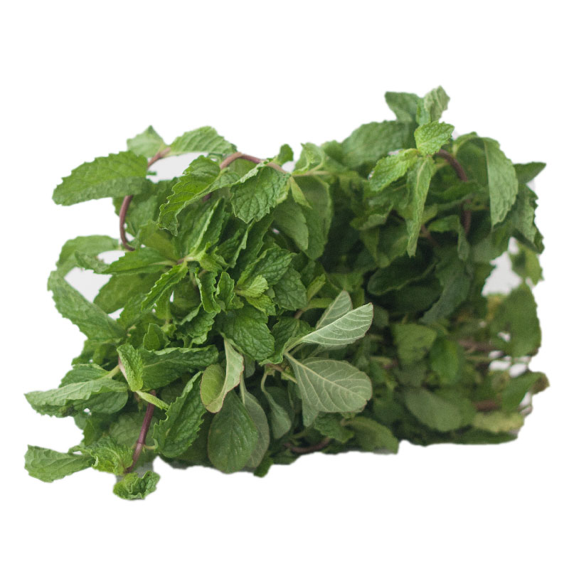 Mint(Pudina) bunch