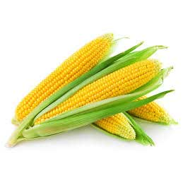 Sweet Corn -2 pieces
