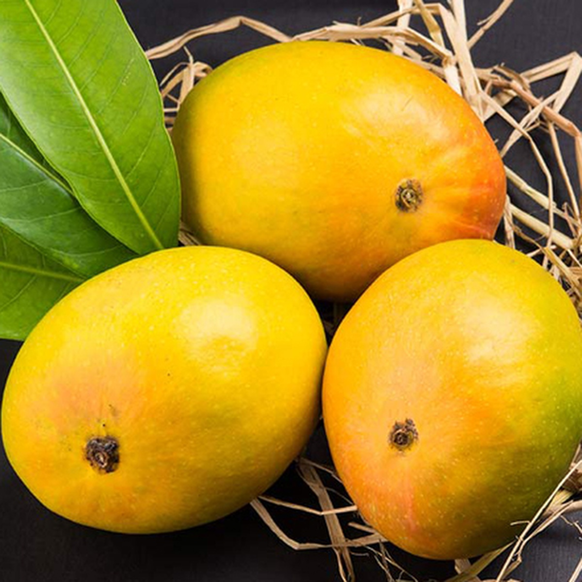 Mango safeda 3 pc (each pc approx 300 g)