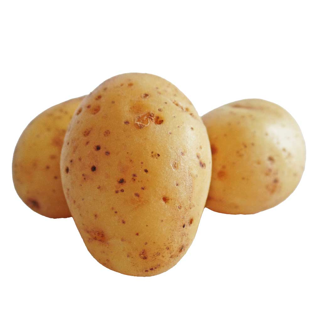 Potato - Bulk Pack-5 Kg