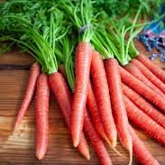 Carrots Orange Bulk Pack-3 Kg