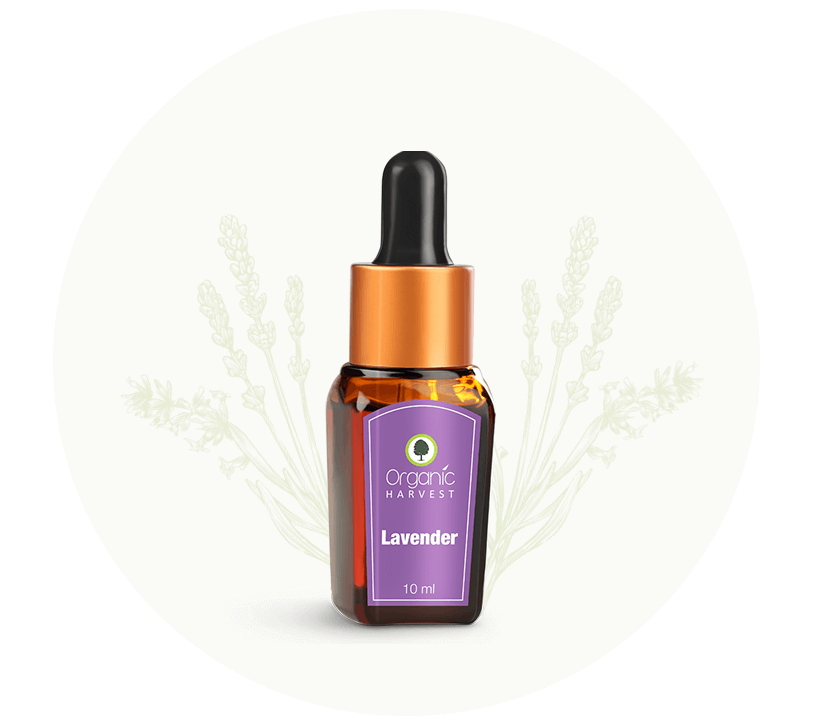 Organic Harvest Lavender Essential Oil 10 ml