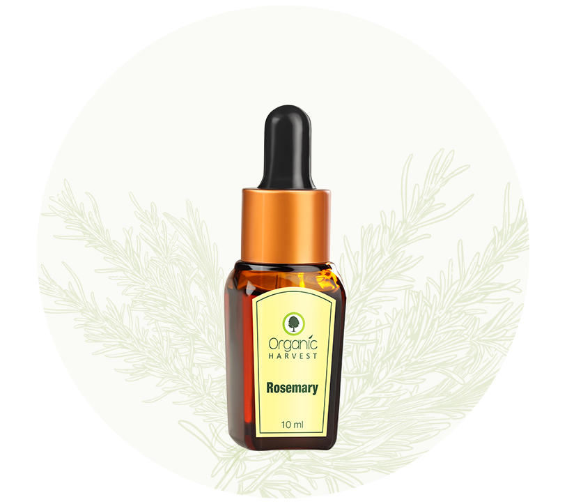 Organic Harvest Rosemary essential Oil 10 ml