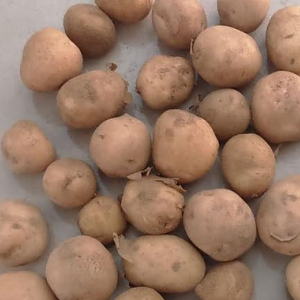 Baby Potato 250 gm