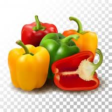 Bell Pepper Bulk pack