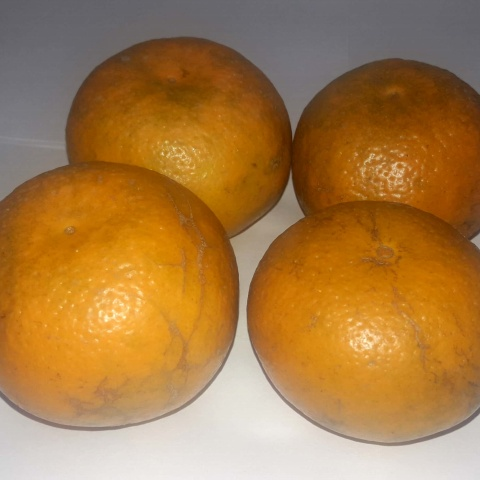 Kinnow Bulk Pack-3Kg(sweet and sour)
