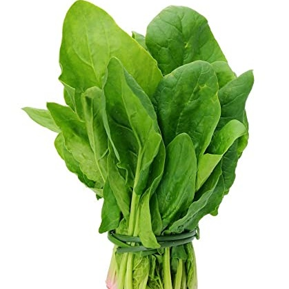 Spinach per bunch( Approx 400-450 gm)